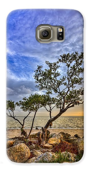 Mangrove Galaxy S6 Case - No Stress Today by Marvin Spates