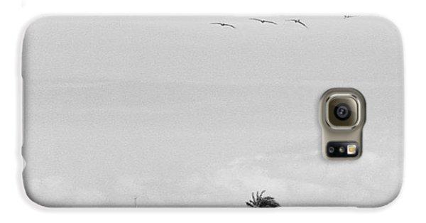 Follow Galaxy S6 Case - #northclearwaterbeach #clearwaterbeach by Georgia Fowler