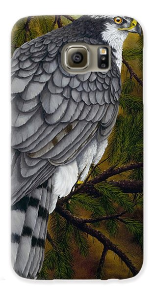 Northern Goshawk Galaxy S6 Case by Rick Bainbridge