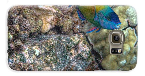 Ocean Color Galaxy S6 Case by Peggy Hughes