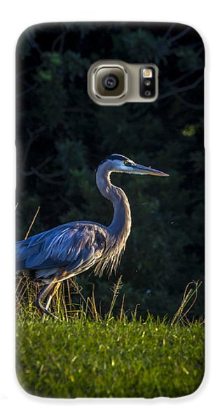 On The March Galaxy S6 Case