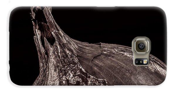 Onion Skin Galaxy S6 Case by Bob Orsillo