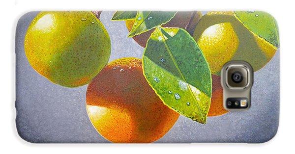 Oranges Galaxy S6 Case by Carey Chen