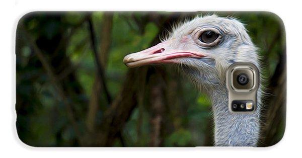 Ostrich Head Galaxy S6 Case by Aged Pixel