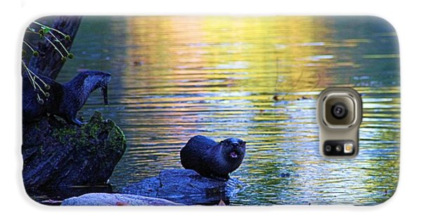 Otter Family Galaxy S6 Case by Dan Sproul