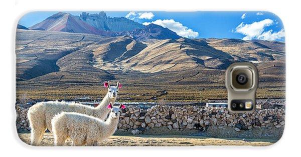 Llama Galaxy S6 Case - Pair Of Llamas by Jess Kraft