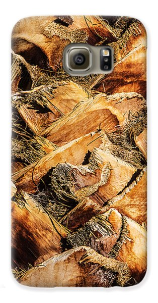Palm Bark Galaxy S6 Case by  Onyonet  Photo Studios