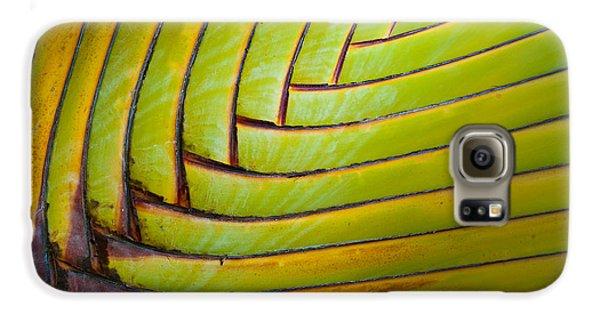 Palm Tree Leafs Galaxy S6 Case