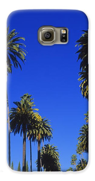 Palm Trees Along A Road, Beverly Hills Galaxy S6 Case by Panoramic Images