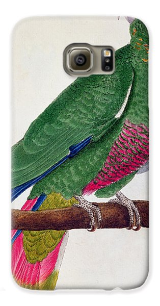 Parrot Galaxy S6 Case by Francois Nicolas Martinet