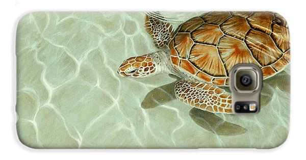 Patterns In Motion - Portrait Of A Sea Turtle Galaxy S6 Case