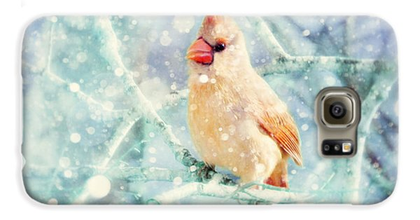 Peaches In The Snow Galaxy S6 Case by Amy Tyler
