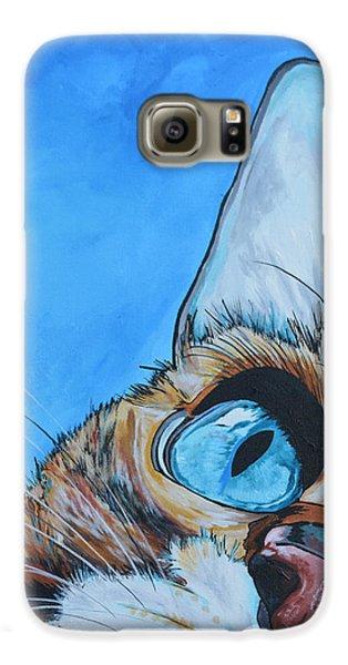 Cat Galaxy S6 Case - Peek A Boo by Patti Schermerhorn
