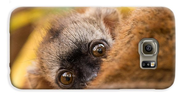 Peekaboo Galaxy S6 Case