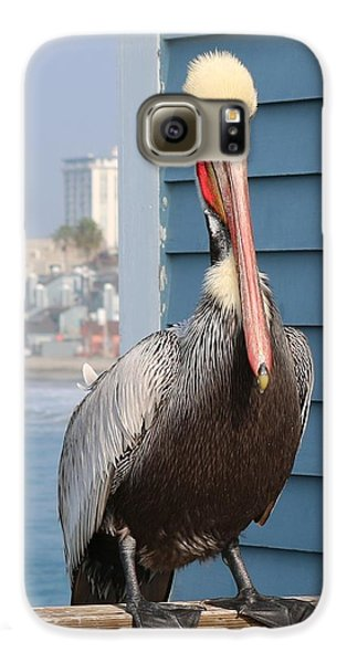 Pelican - 4 Galaxy S6 Case