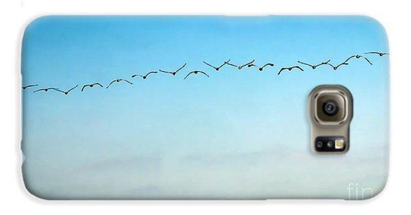 Pelican Flight Line Galaxy S6 Case
