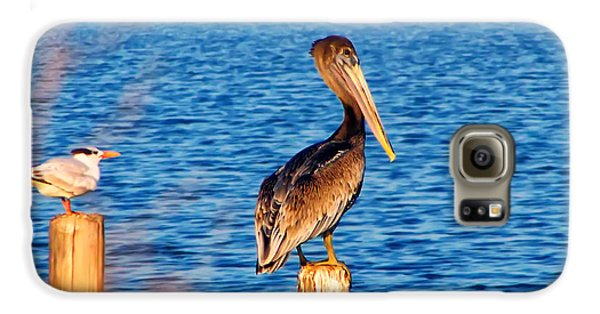 Pelican On A Pole Galaxy S6 Case