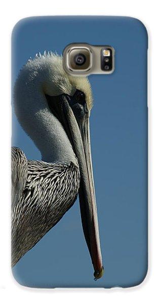 Pelican Profile 2 Galaxy S6 Case by Ernie Echols