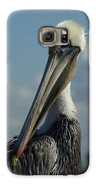 Pelican Profile Galaxy S6 Case by Ernie Echols