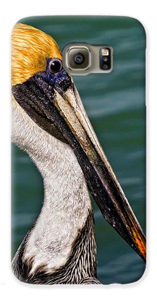 Pelican Profile No.40 Galaxy S6 Case