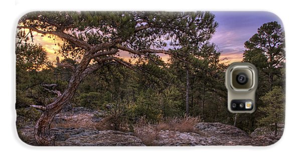 Petit Jean Mountain Bonsai Tree - Arkansas Galaxy S6 Case