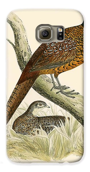 Pheasant Galaxy S6 Case by Beverley R Morris