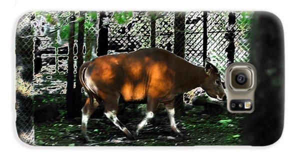 Phenomena Of Banteng Walk Galaxy S6 Case