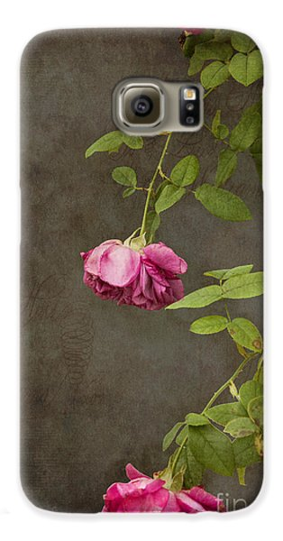 Flowers Galaxy S6 Case - Pink On Gray by K Hines