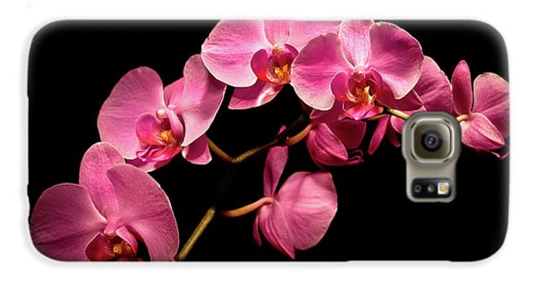 Pink Orchids 3 Galaxy S6 Case by  Onyonet  Photo Studios