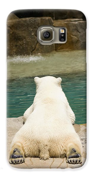 Playful Polar Bear Galaxy S6 Case by Adam Romanowicz