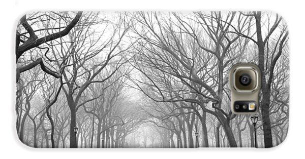 New York City - Poets Walk Central Park Galaxy S6 Case