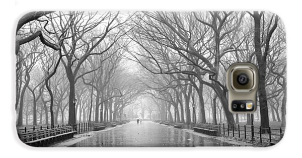 New York City - Poets Walk Central Park Galaxy S6 Case by Dave Beckerman