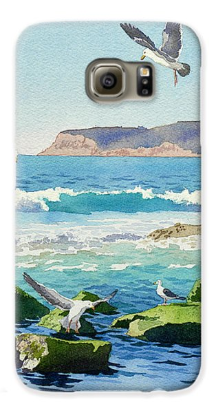 Seagull Galaxy S6 Case - Point Loma Rocks Waves And Seagulls by Mary Helmreich