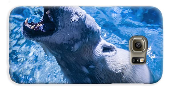 Polar Bear Galaxy S6 Case