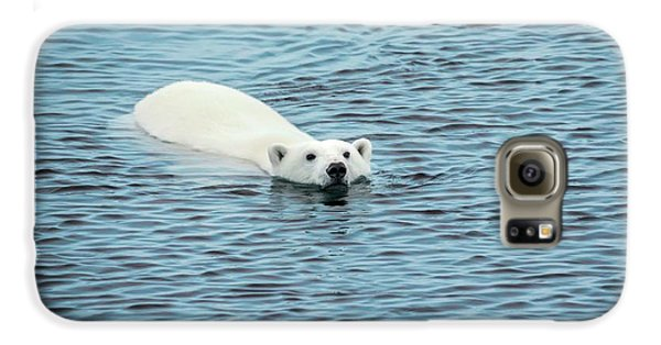 Polar Bear Swimming Galaxy S6 Case