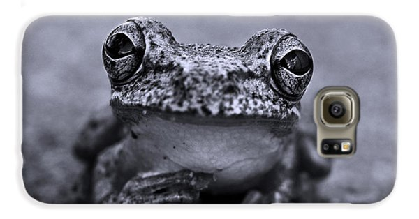Pondering Frog Bw Galaxy S6 Case by Laura Fasulo
