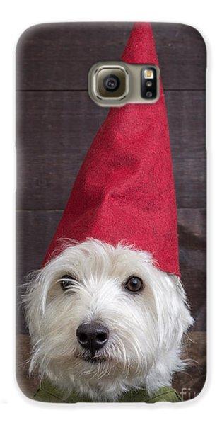 Elf Galaxy S6 Case - Portrait Of A Garden Gnome by Edward Fielding