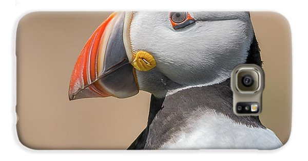 Puffin Galaxy S6 Case - Portrait by Piotr Galus