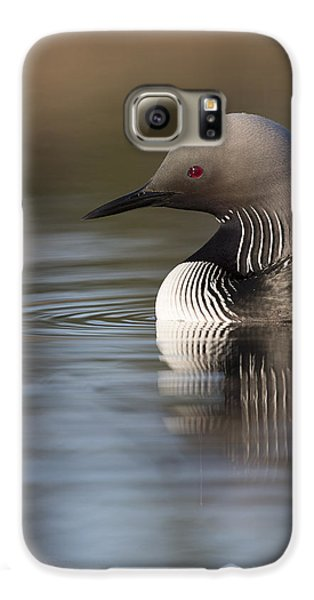 Profile Of A Pacific Loon Galaxy S6 Case by Tim Grams