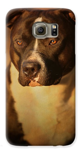 Bull Galaxy S6 Case - Proud Pit Bull by Larry Marshall