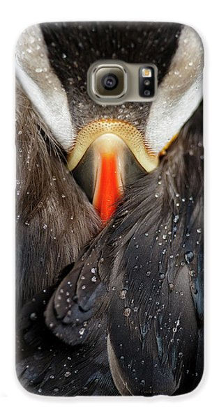 Puffin Galaxy S6 Case - Puffin Studio by Mario Su?rez