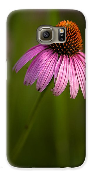 Purple Cone Flower Portrait Galaxy S6 Case by  Onyonet  Photo Studios