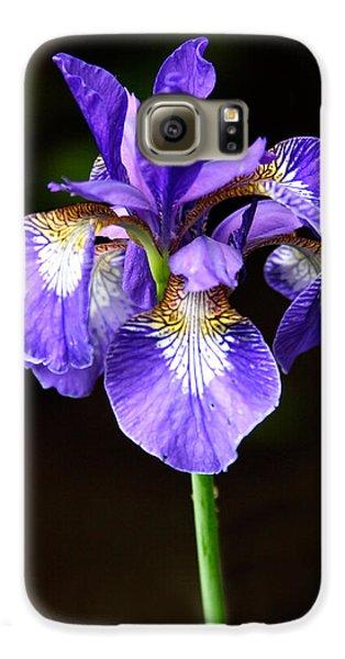Purple Iris Galaxy S6 Case by Adam Romanowicz