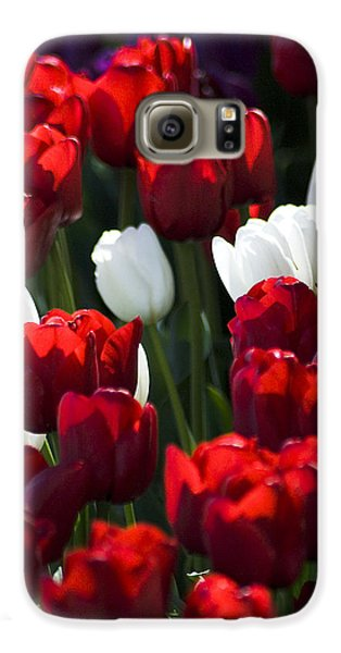 Galaxy S6 Case featuring the photograph Red And White Tulips by Yulia Kazansky