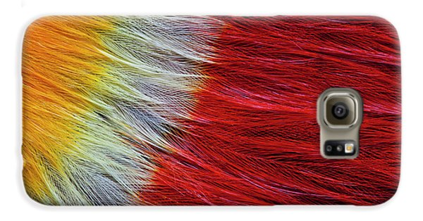 Red Breasted Toucan Galaxy S6 Case by Darrell Gulin