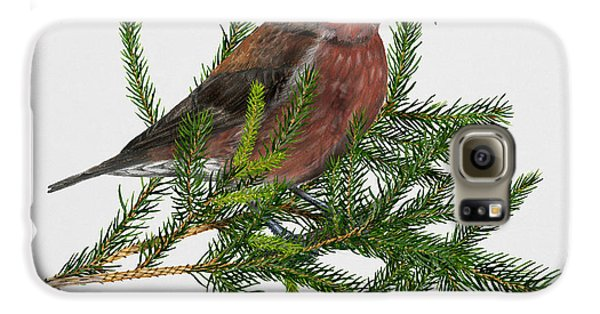 Red Crossbill -common Crossbill Loxia Curvirostra -bec-crois Des Sapins -piquituerto -krossnefur  Galaxy S6 Case