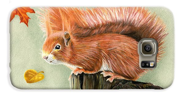 Red Squirrel In Autumn Galaxy S6 Case by Sarah Batalka