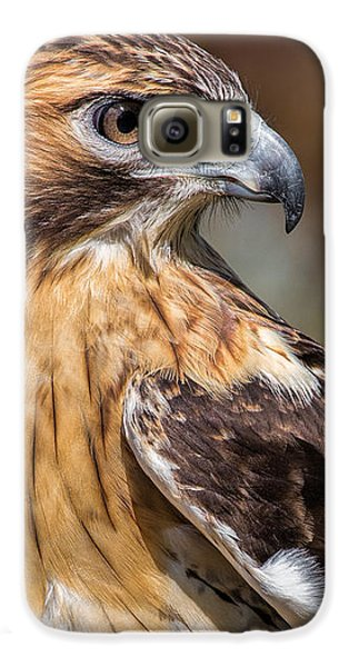 Red Tail Hawk Galaxy S6 Case