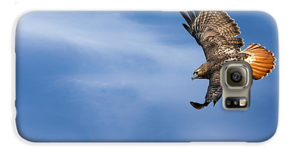 Red Tailed Hawk Soaring Galaxy S6 Case by Bill Wakeley