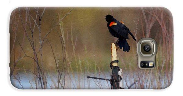 Red Winged Blackbird 2 Galaxy S6 Case by Ernie Echols